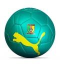 Puma Cameroon Football 2