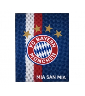 Bayern Munich Team Blanket